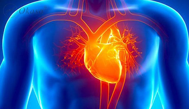 Bệnh tim có di truyền hay không ?