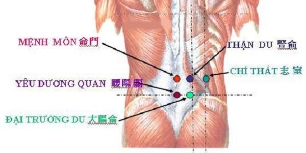 Bấm huyệt chữa bệnh đau lưng tại nhà cùng ghế massage