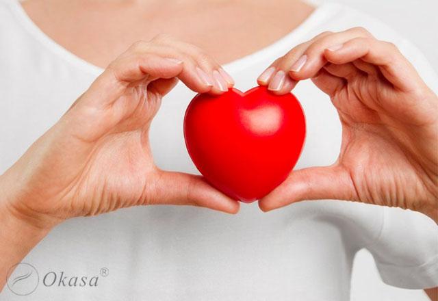 Cấu tạo của tim và tình trạng rung nhĩ