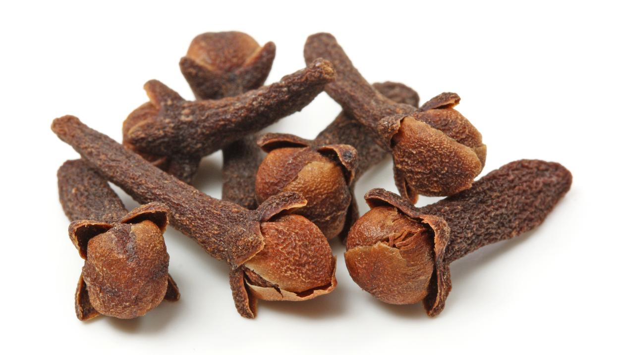Công dụng của cây đinh lăng đối với các bệnh xương khớp