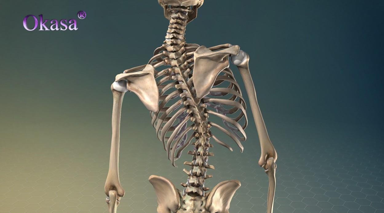 Phương pháp điều trị cong vẹo cột sống bẩm sinh