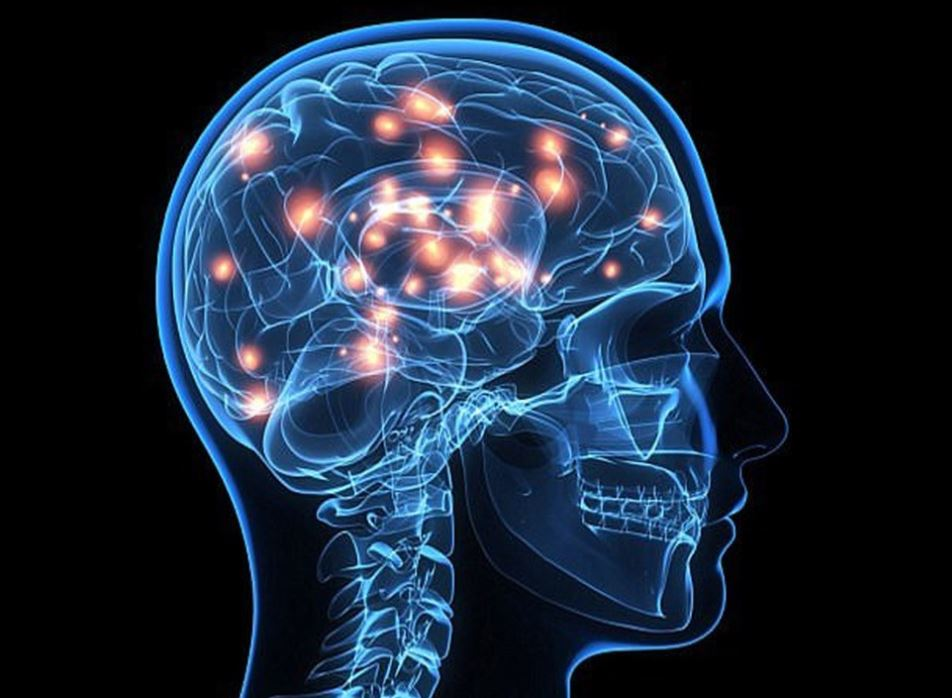 Hoạt huyết dưỡng não loại nào tốt?