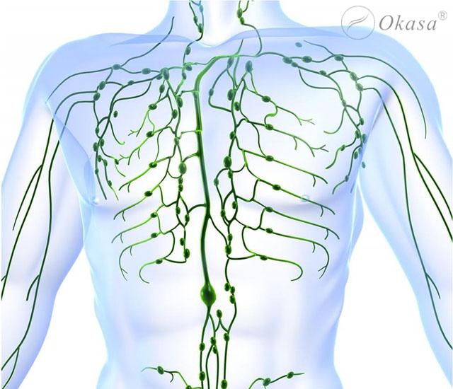 Phương pháp massage hệ bạch huyết