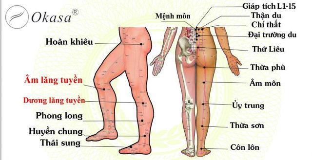 8 huyệt vị nên massage thường xuyên để khỏe hơn mỗi ngày