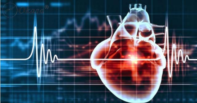Tìm hiểu phương pháp siêu âm tim