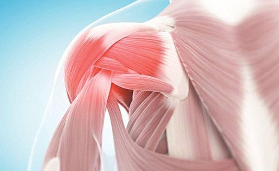 Vật lý trị liệu giúp phục hồi khớp vai sau chấn thương